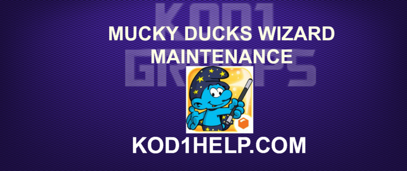 MUCKY DUCKS WIZARD MAINTENANCE